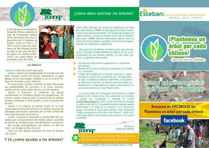 Triptico_ Plantemos un árbol por cada chileno