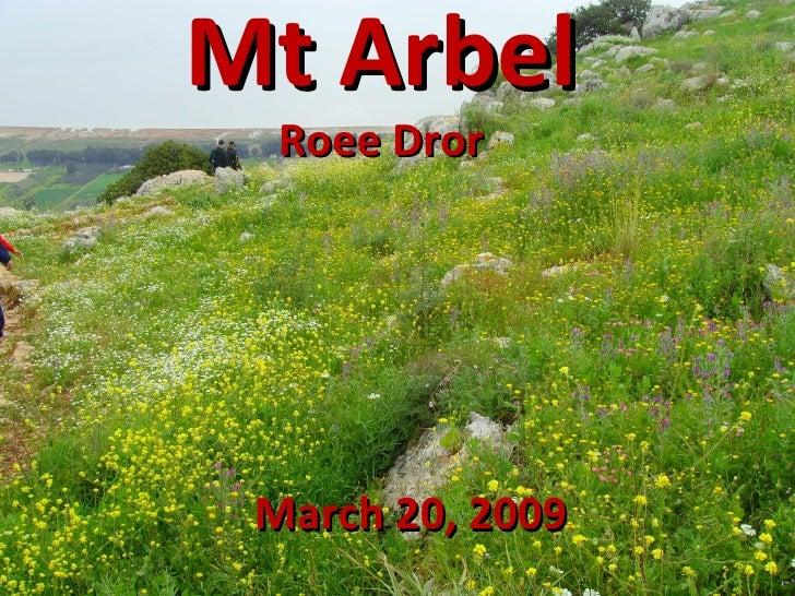 Mt Arbel Roee Dror March 20, 2009