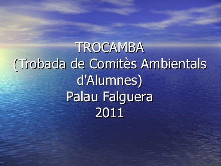 TROCAMBA (Trobada de Comitès Ambientals d'Alumnes) Palau Falguera 2011