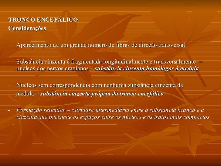 Tronco EncefáLico  MóDulo 6