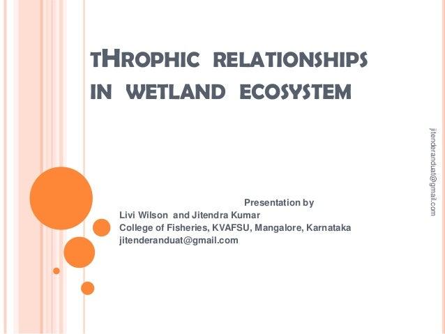 THROPHIC RELATIONSHIPS IN WETLAND ECOSYSTEM jitenderanduat@gmail.com  Presentation by Livi Wilson and Jitendra Kumar Colle...