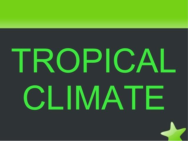 Tropical climate saray,rocio v.,claudia & ineva