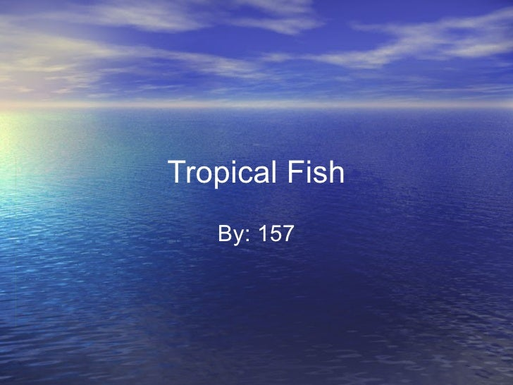 Tropical Fish By: 157