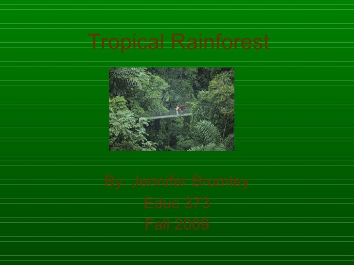 Tropical Rainforest By. Jennifer Brumley Educ 373 Fall 2009
