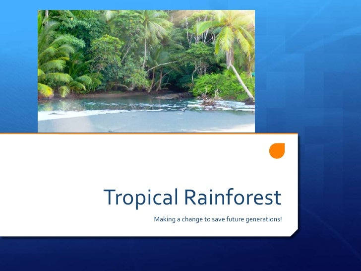 Tropical Rainforest<br />Making a change to save future generations!<br />