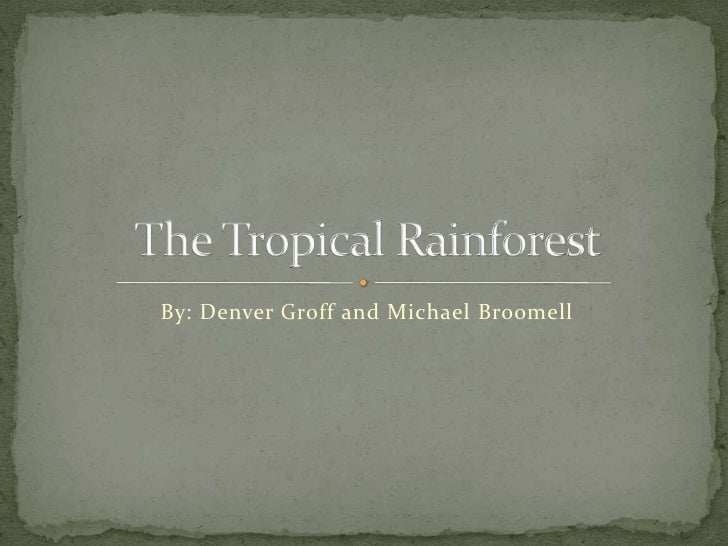By: Denver Groff and Michael Broomell<br />The Tropical Rainforest<br />