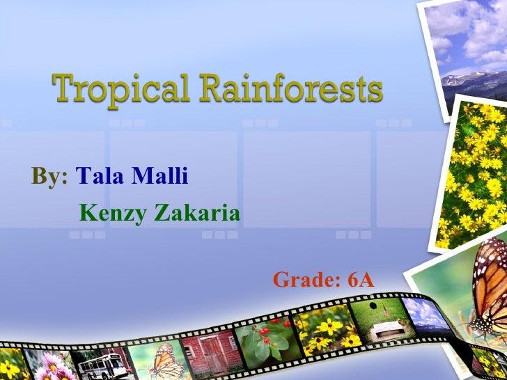<ul><li>By:   Tala Malli </li></ul><ul><ul><ul><li>Kenzy Zakaria </li></ul></ul></ul><ul><ul><ul><li>Grade: 6A </li></ul><...