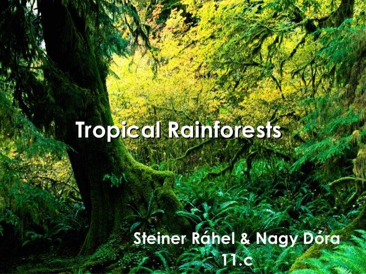 Tropical Rainforests     Steiner Ráhel & Nagy Dóra                11.c
