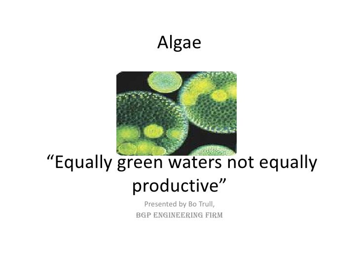 """Algae """"Equally green waters not equally productive""""<br />Presented by Bo Trull,<br />BGP Engineering Firm<br />"""
