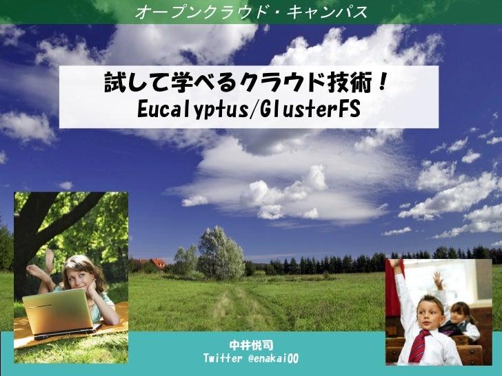 試して学べるクラウド技術!Eucalyptus/GlusterFS