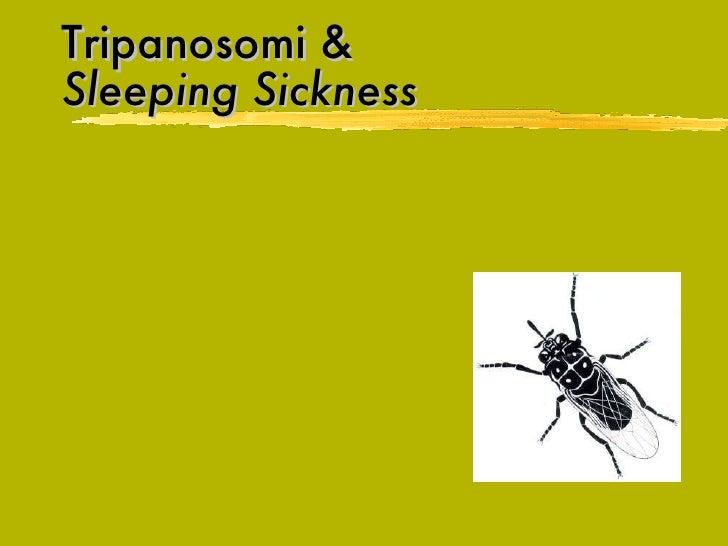 Tripanosomi &   Sleeping Sickness