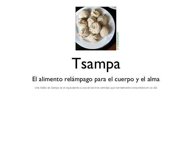 centroholistico.cl                             TsampaEl alimento relámpago para el cuerpo y el almaUna bolita de Sampa es ...