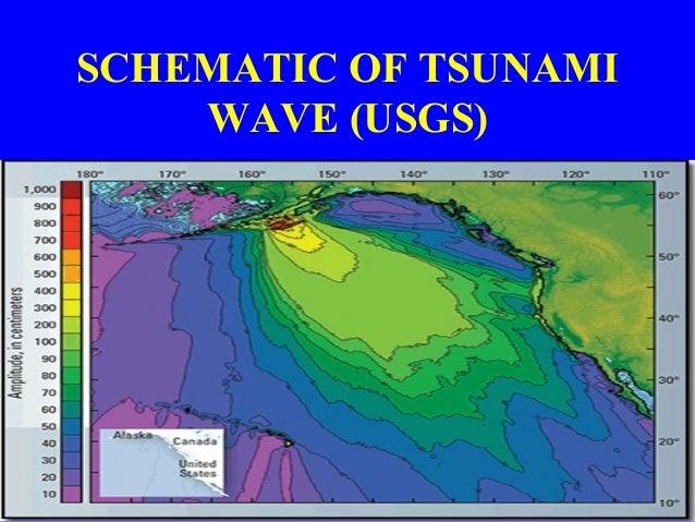 Tsunami risk reduction strategies