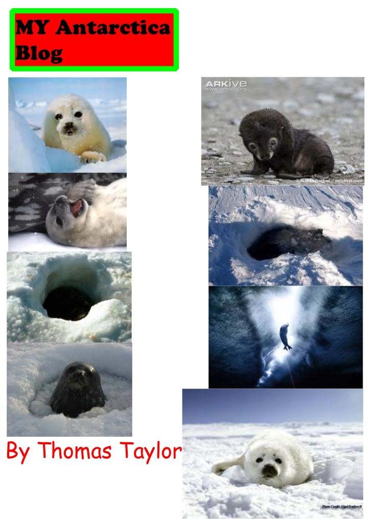 MY AntarcticaBlogBy Thomas Taylor