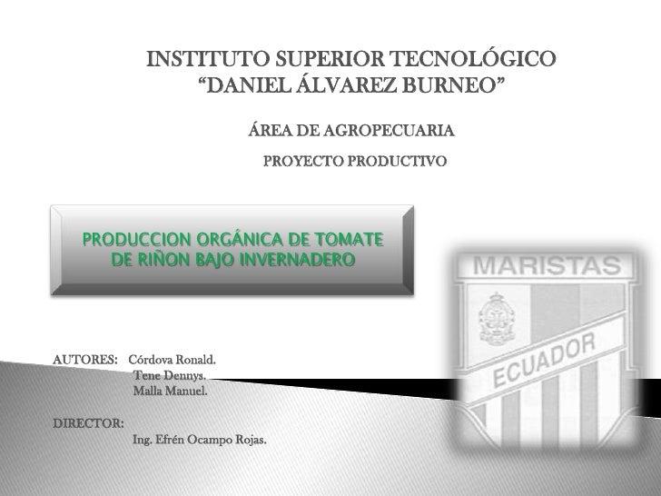 """INSTITUTO SUPERIOR TECNOLÓGICO<br />""""DANIEL ÁLVAREZ BURNEO""""<br />ÁREA DE AGROPECUARIA<br />  PROYECTO PRODUCTIVO<br />PROD..."""