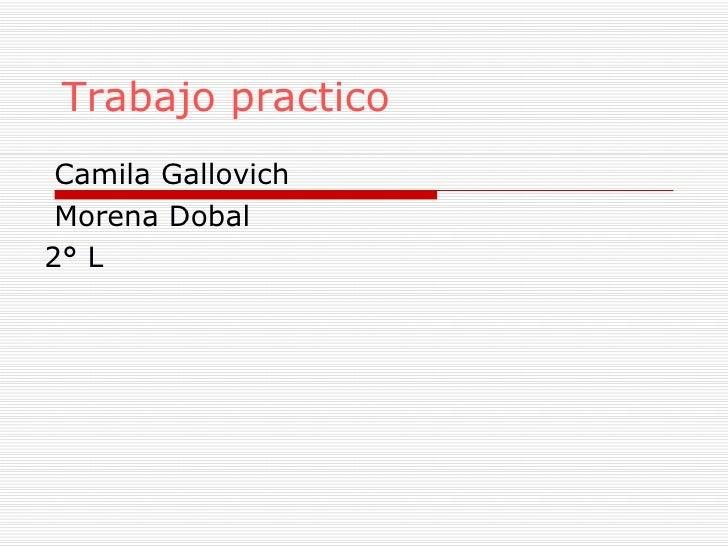 Trabajo practico Camila Gallovich Morena Dobal 2° L