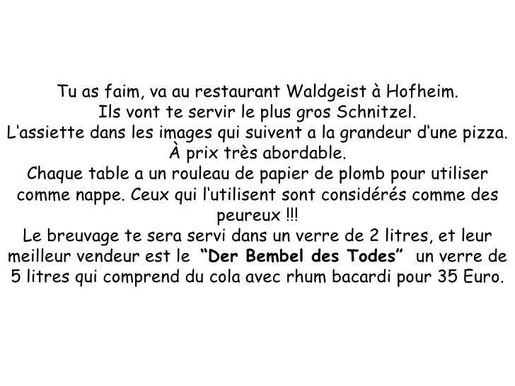 Tu as faim, va au restaurant Waldgeist à Hofheim. Ils vont te servir le plus gros Schnitzel. L'assiette dans les images qu...
