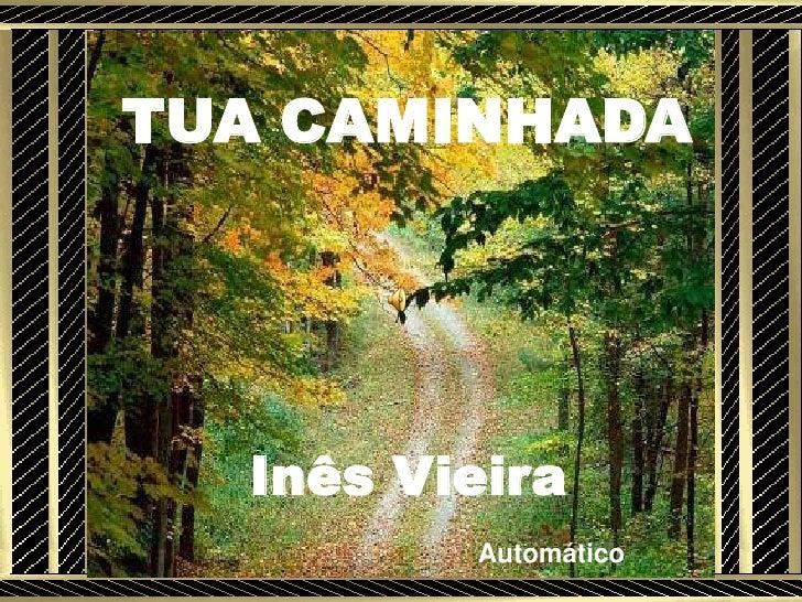 TUA CAMINHADA  Inês Vieira   .         Automático