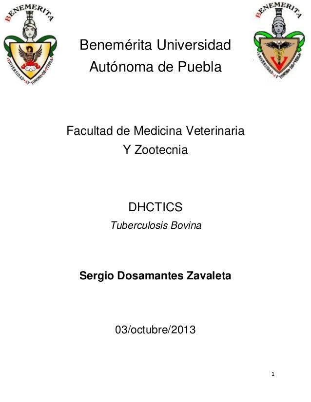 Benemérita Universidad Autónoma de Puebla  Facultad de Medicina Veterinaria Y Zootecnia  DHCTICS Tuberculosis Bovina  Serg...