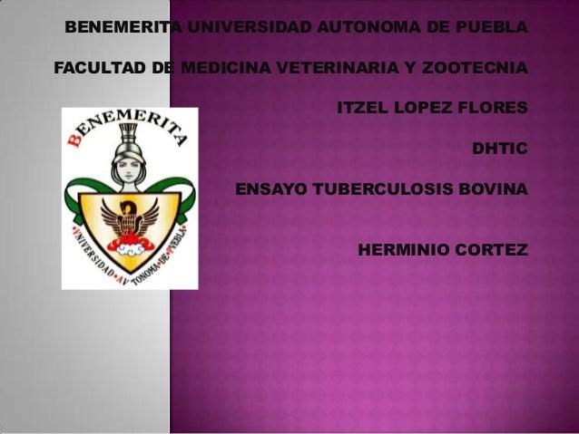 BENEMERITA UNIVERSIDAD AUTONOMA DE PUEBLA FACULTAD DE MEDICINA VETERINARIA Y ZOOTECNIA  ITZEL LOPEZ FLORES DHTIC ENSAYO TU...