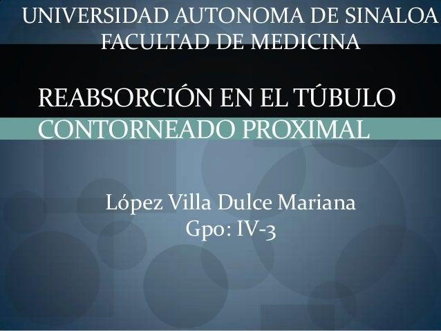 UNIVERSIDAD AUTONOMA DE SINALOA      FACULTAD DE MEDICINA REABSORCIÓN EN EL TÚBULO CONTORNEADO PROXIMAL      López Villa D...