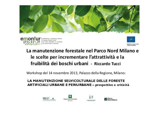 La manutenzione forestale nel Parco Nord Milano e le scelte per incrementare l'attrattività e la fruibilità dei boschi urb...
