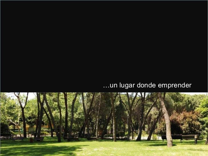 Tu experiencia - Inicio de los programas Executive 2010 - 2011