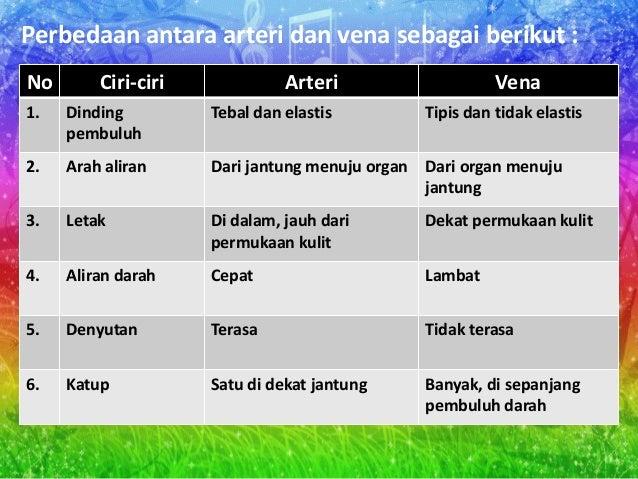 rinahaq perbedaan arteri dan vena