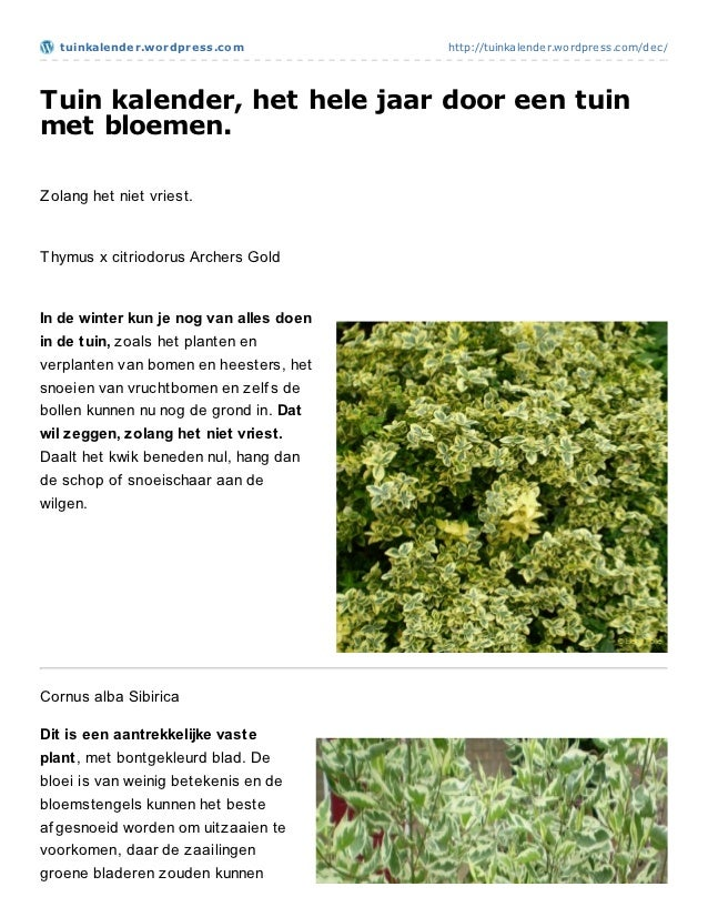 t uinkalender.wordpress.com            http://tuinkalender.wordpress.com/dec/Tuin kalender, het hele jaar door een tuinmet...