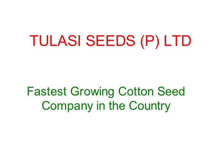 TULASI SEEDS (P) LTDFastest Growing Cotton Seed  Company in the Country