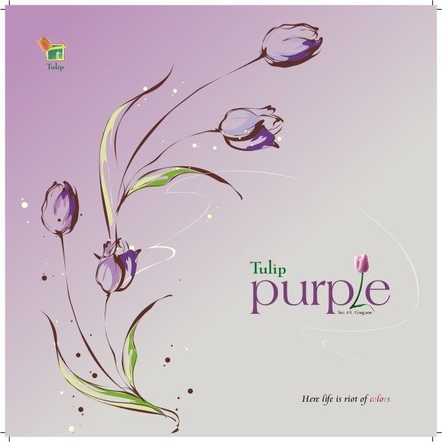 purp e9Sec. 6 , Gurgaon Here life is riot of colors