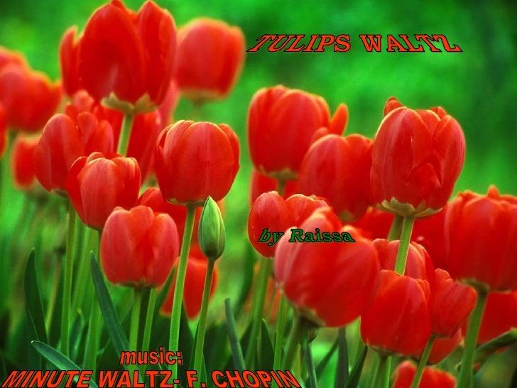 TULIPS WALTZ music: MINUTE WALTZ- F. CHOPIN by Raissa