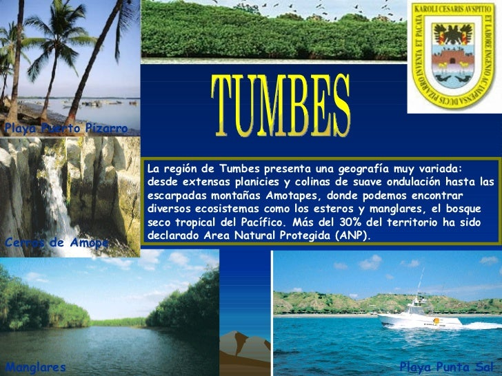 La región de Tumbes presenta una geografía muy variada: desde extensas planicies y colinas de suave ondulación hasta las e...