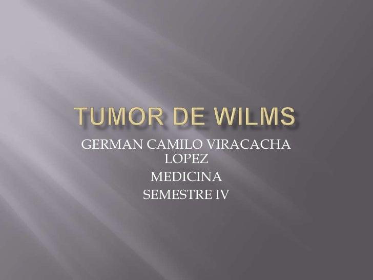 TUMOR DE WILMS<br />GERMAN CAMILO VIRACACHA LOPEZ<br />MEDICINA<br />SEMESTRE IV<br />