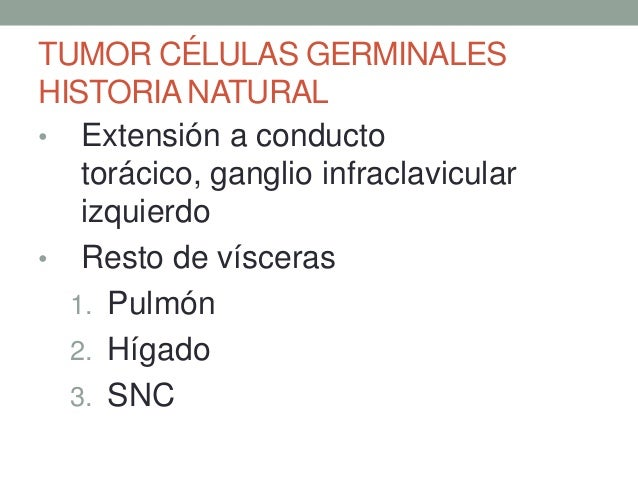 Tumores de testículo