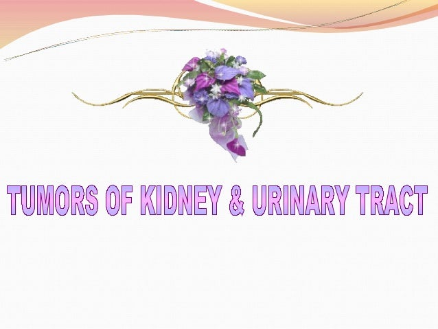 To discussCystic Lesions of KidneyCommon Tumors of kidney and Urinary bladder