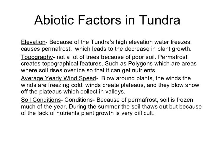 Desbribing Abiotic Factors of the Arctic Tundra  Arctic
