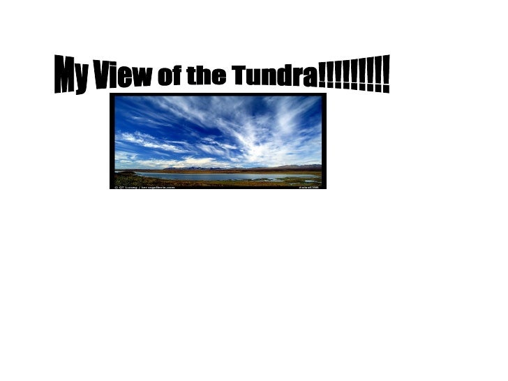 My View of the Tundra!!!!!!!!!