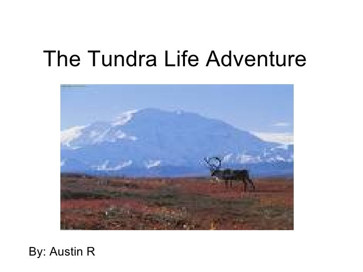 The Tundra Life Adventure By: Austin R