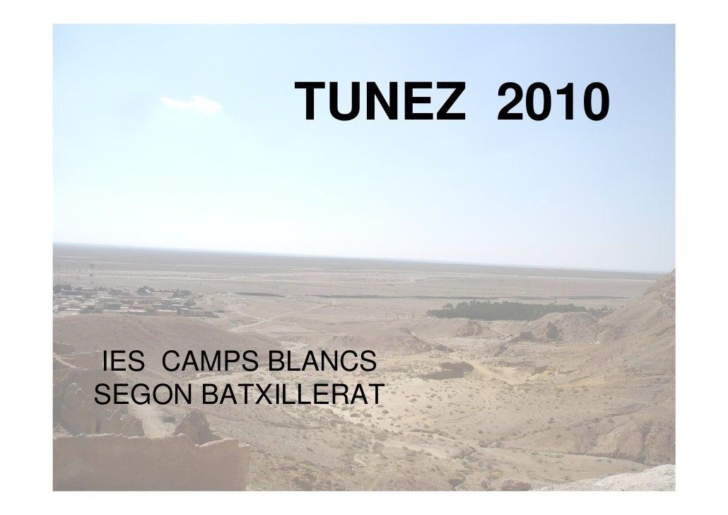 TUNEZ 2010    IES CAMPS BLANCS SEGON BATXILLERAT