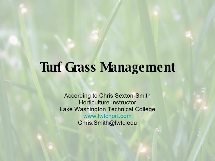 Turf Grass Management According to Chris Sexton-Smith Horticulture Instructor Lake Washington Technical College www.lwtcho...