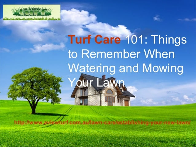 Things to Remember When Watering and Mowing Your Lawn