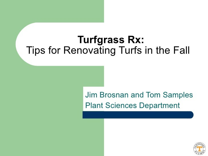 Jim Brosnan and Tom Samples Plant Sciences Department Turfgrass Rx: Tips for Renovating Turfs in the Fall
