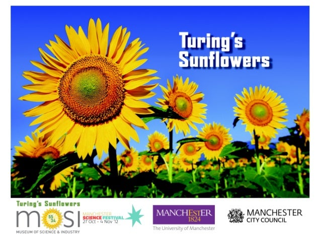 Turingsunflowers presentation @  hackmanchester