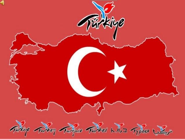 TURKEY: Sevket Özay Primary School - Kocaeli