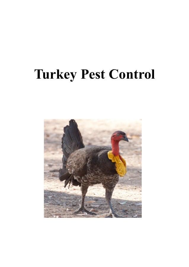 Turkey Pest Control