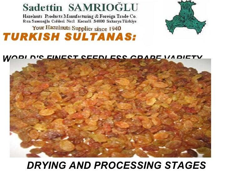 <li>TURKISH SULTANAS:   WORLD'S FINEST SEEDLESS GRAPE VARIETY DRYING AND PROCESSING STAGES </li><li>Welcome to SAMRIO...