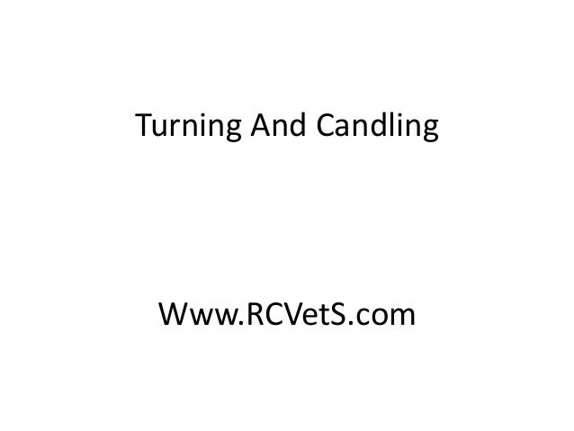Turning And Candling  Www.RCVetS.com