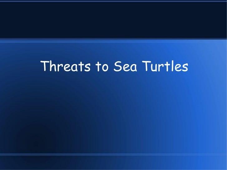 Threats to Sea Turtles