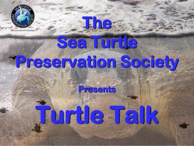 Turtle talk 2014